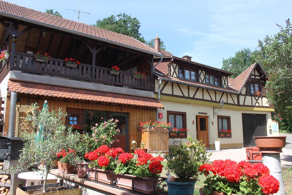La maison de vacances en Alsace