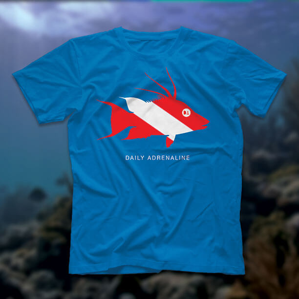 A Daily Adrenaline shirt designof a hogfish with the dive flag masked within it