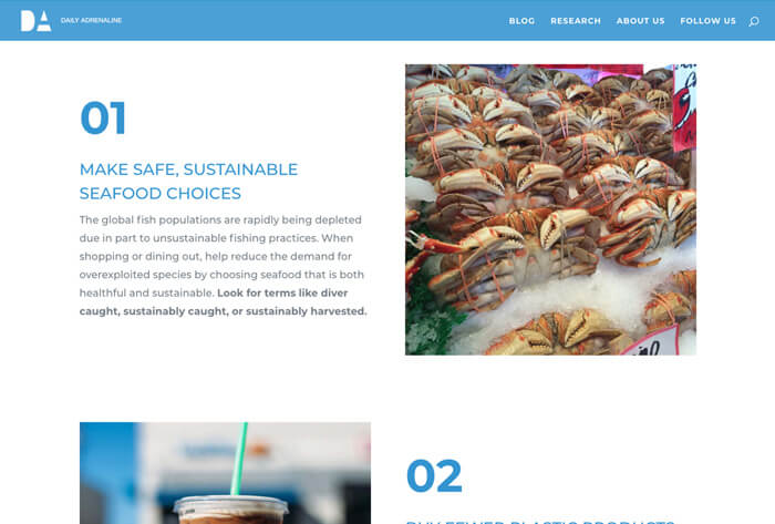 Daily Adrenaline responsive website design screenshot showing an article about keeping our beaches clean