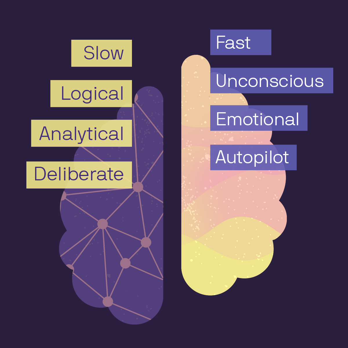 An image showing the emotional and logical halves of the brain