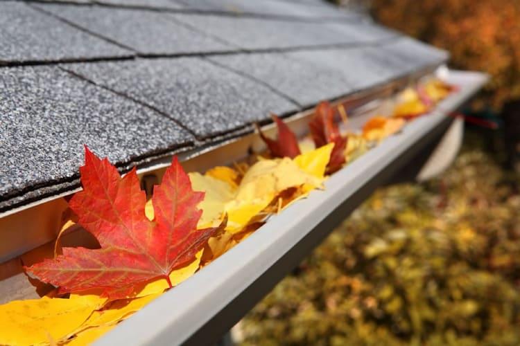 Dachrinnen säubern und Dach winterfest machen