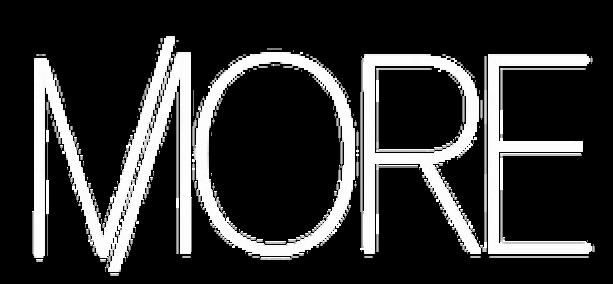 more company logo