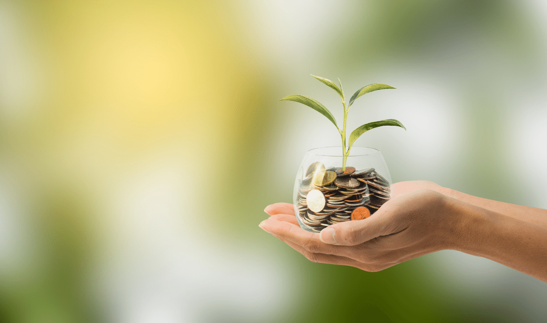A Jar of coins with a plant growing from the center
