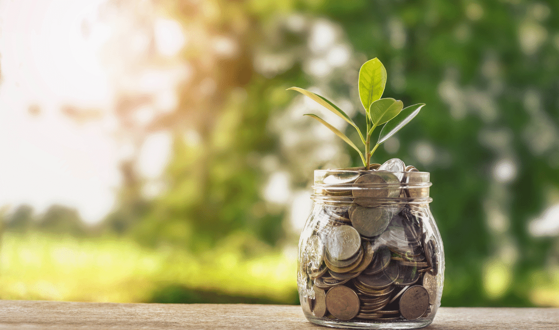 Plant growing on coins in a glass jar