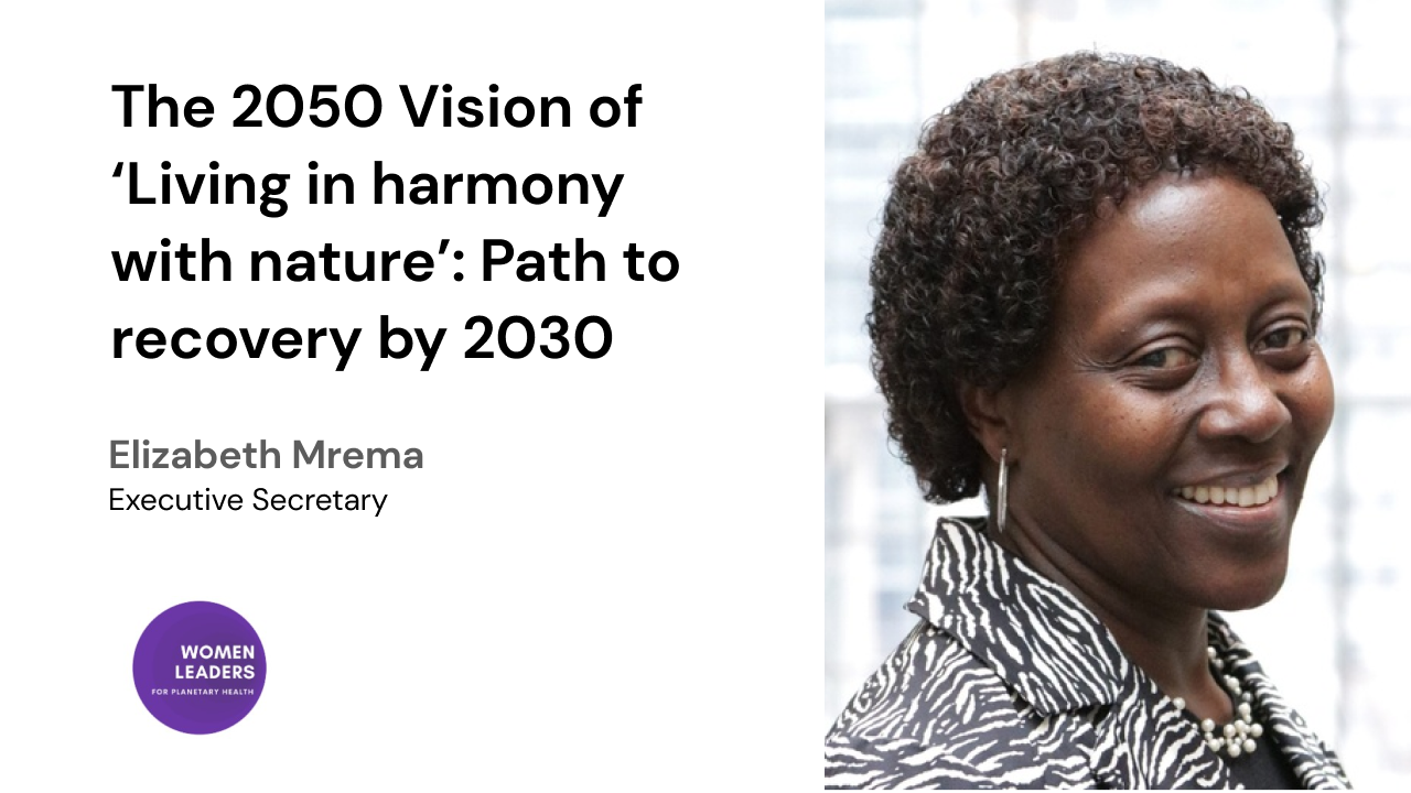 The 2050 Vision of 'Living in harmony with nature': Path to recovery by 2030