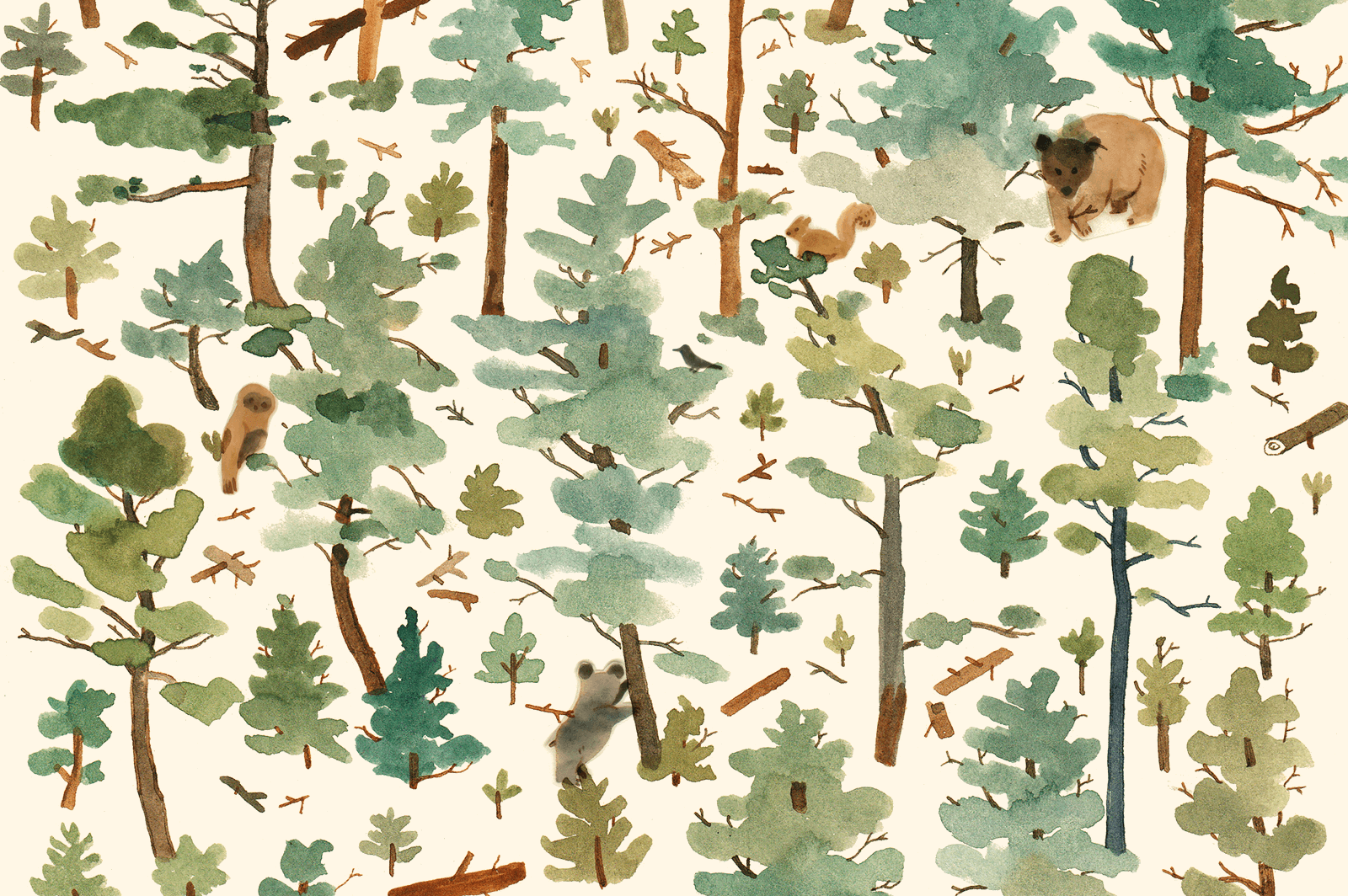 Watercolour illustration of a forest with bears