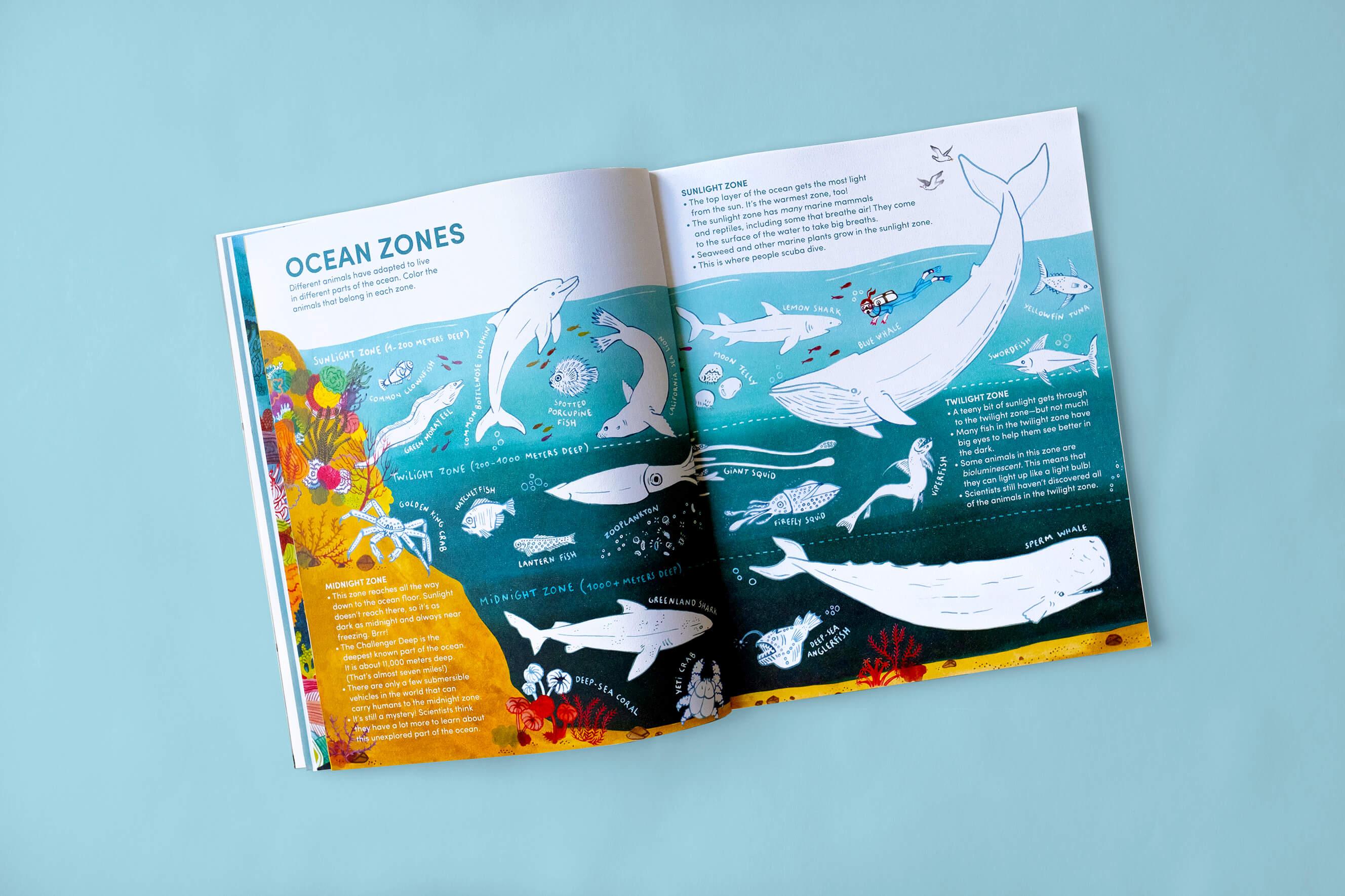Kid's magazine open on an illustration of the ocean's zones