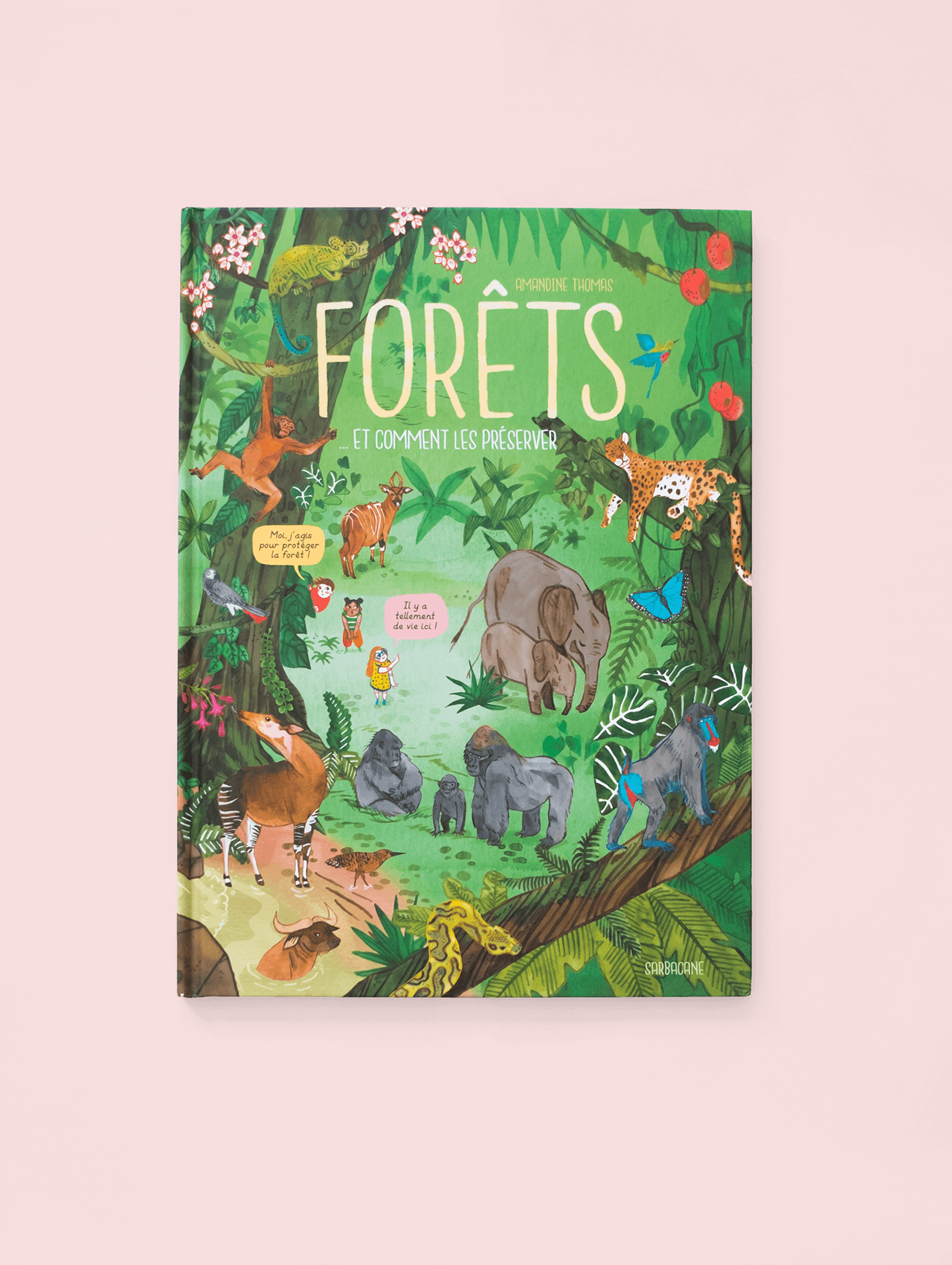 Cover of a kids' book showing an illustration of a rainforest