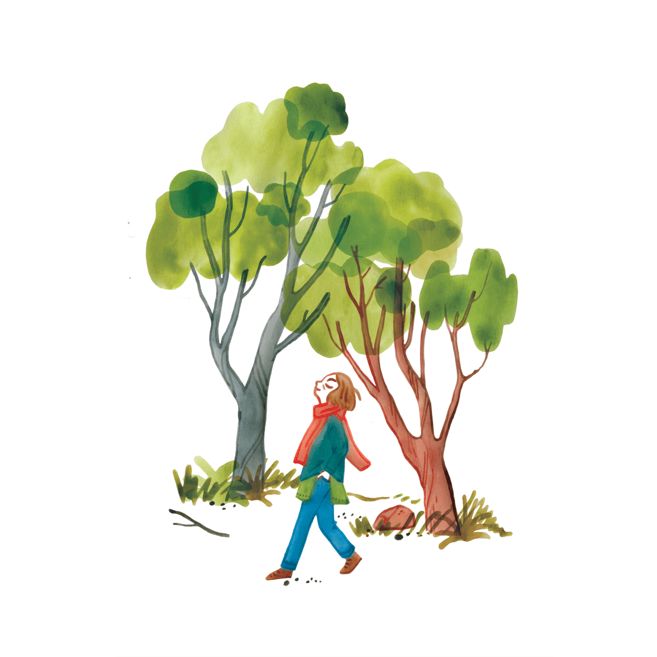 Editorial illustration of a woman walking amongst trees