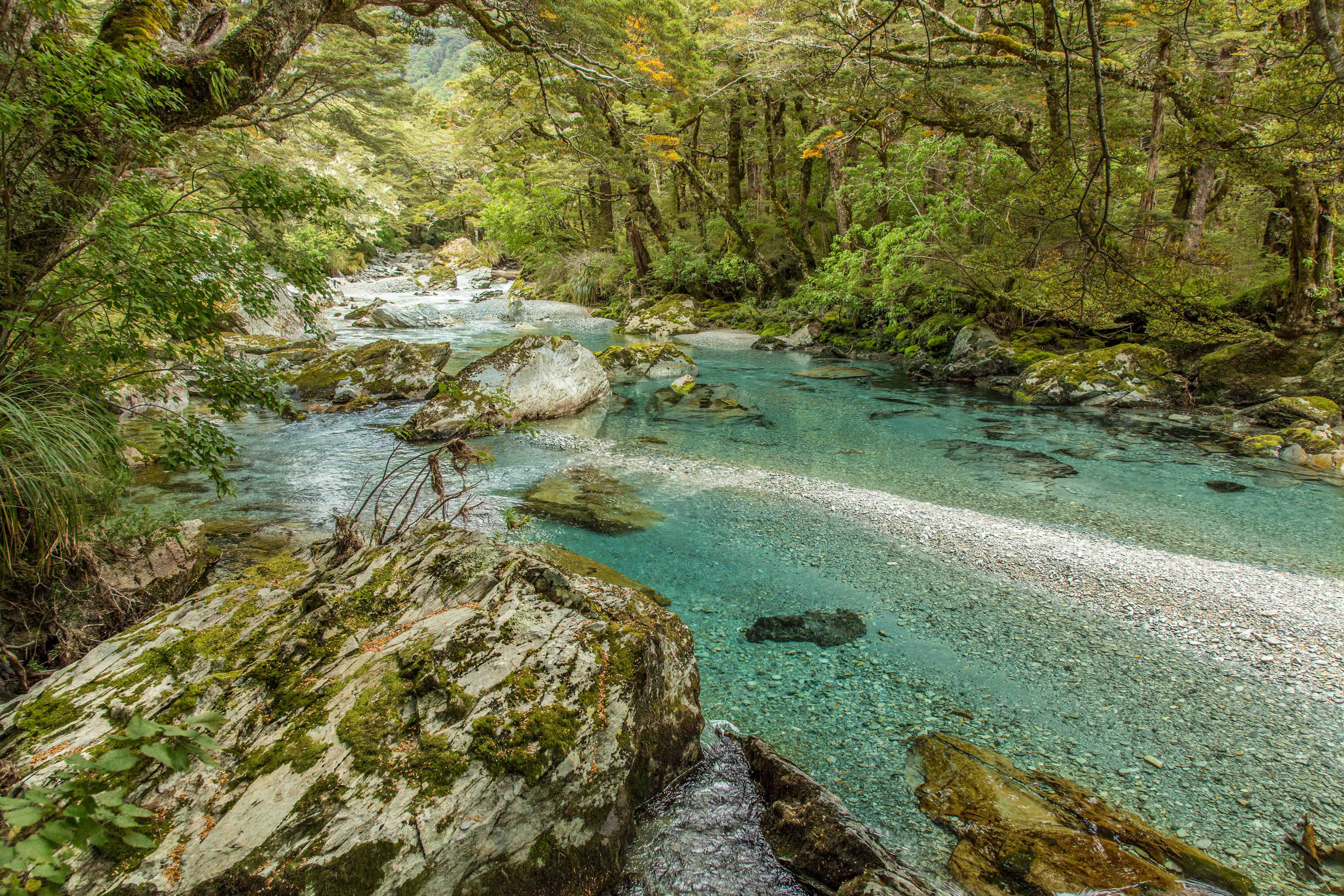 photo of new zealand river