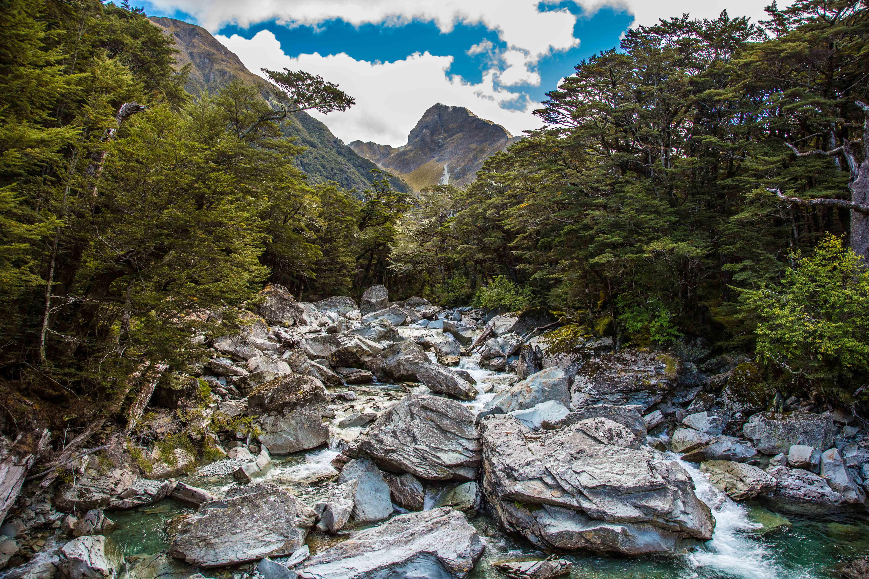 photo of new zealand gorge