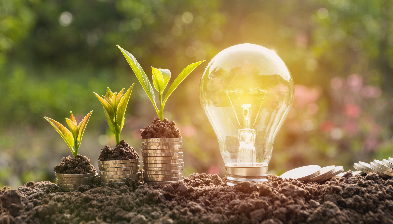 Watteco, innovació social per la transició energètica