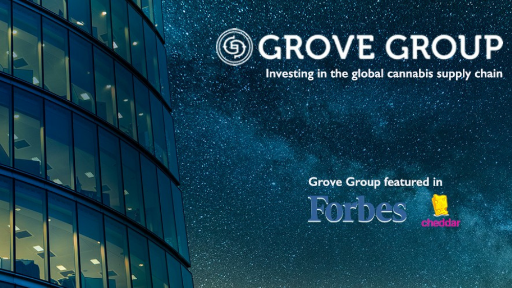 Grove  Group Management Logo with starry sky background