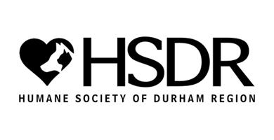 HSDR Logo