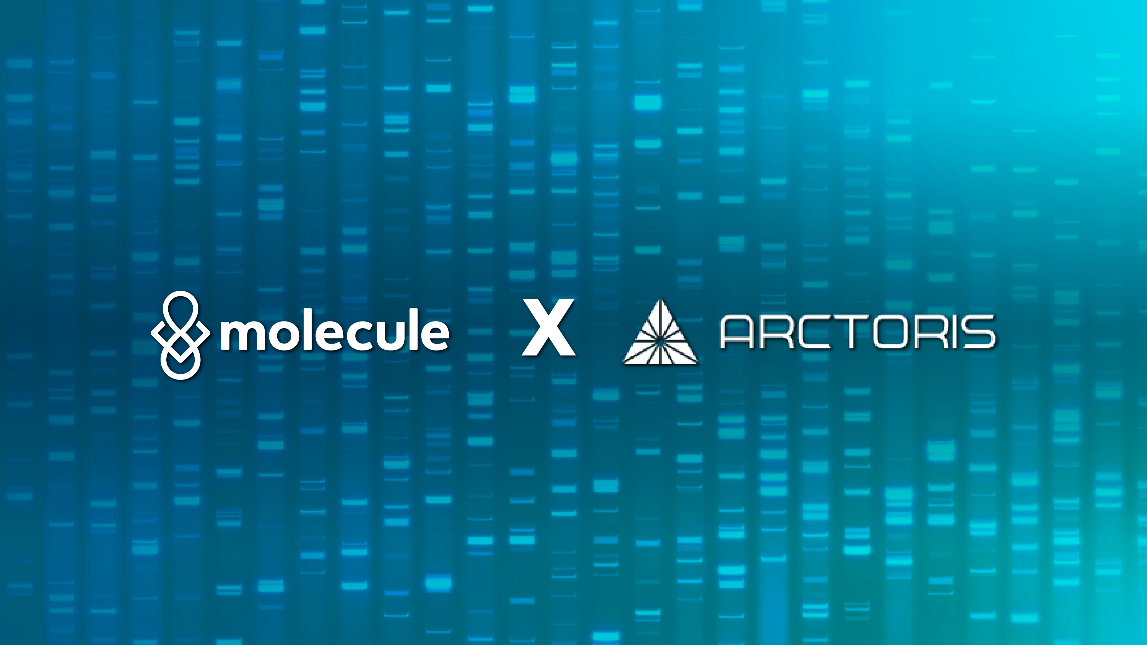 Molecule and Arctoris announce partnership to tackle the innovation crisis in drug development
