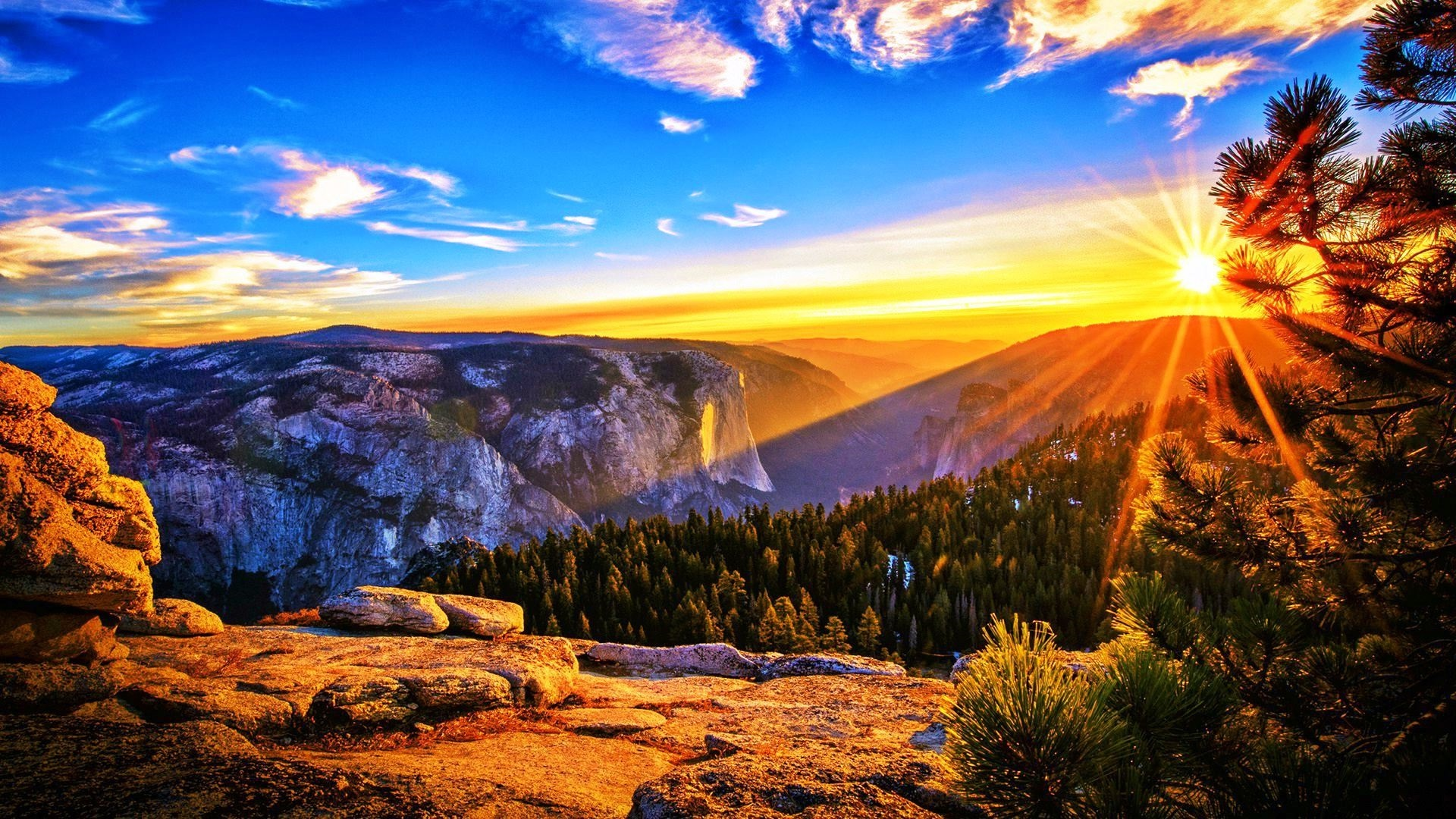 July 4th Weekend @ Yosemite!! What could be better? 3-day Holiday Weekend!