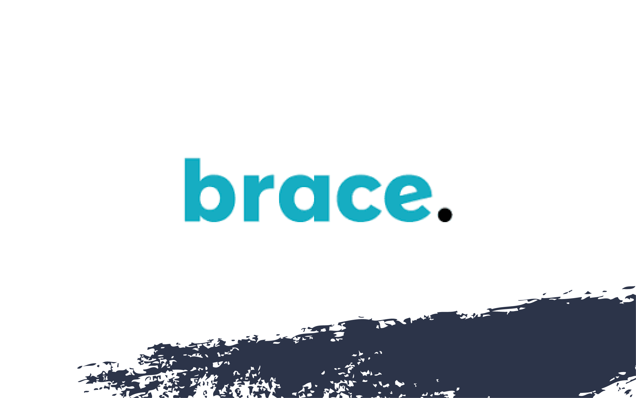 Our investment in Brace