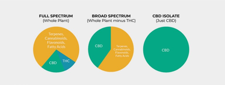 Pie chart diagrams of CBD and THC content