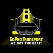 GoPro Transport logo