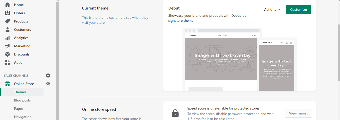 Customize the theme and layout of your store!