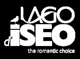 Logo Visit Lago Iseo