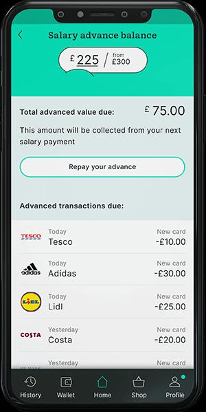 borofree spending repayment