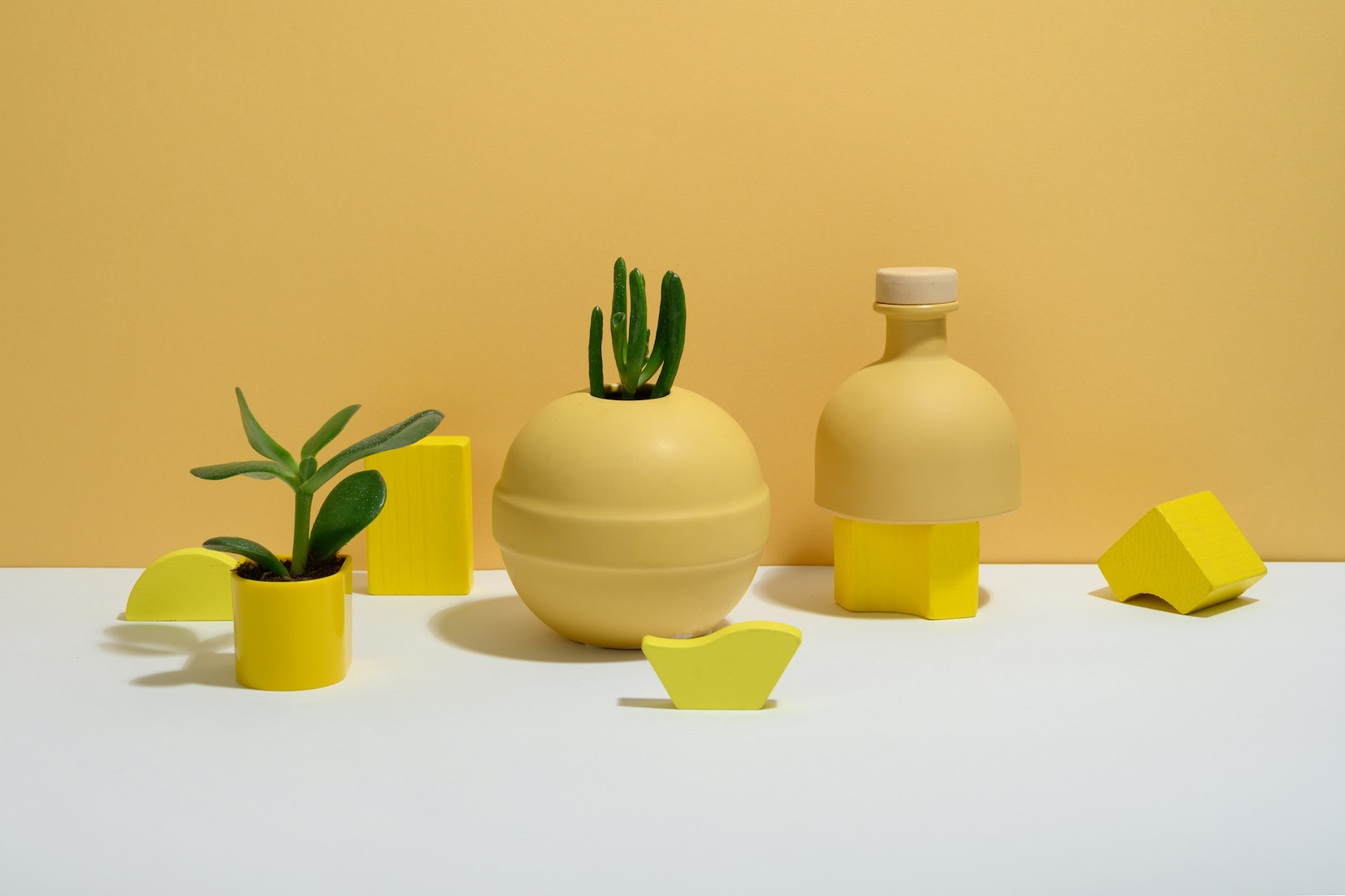 Yellow objects and plants in a yellow-white studio decor