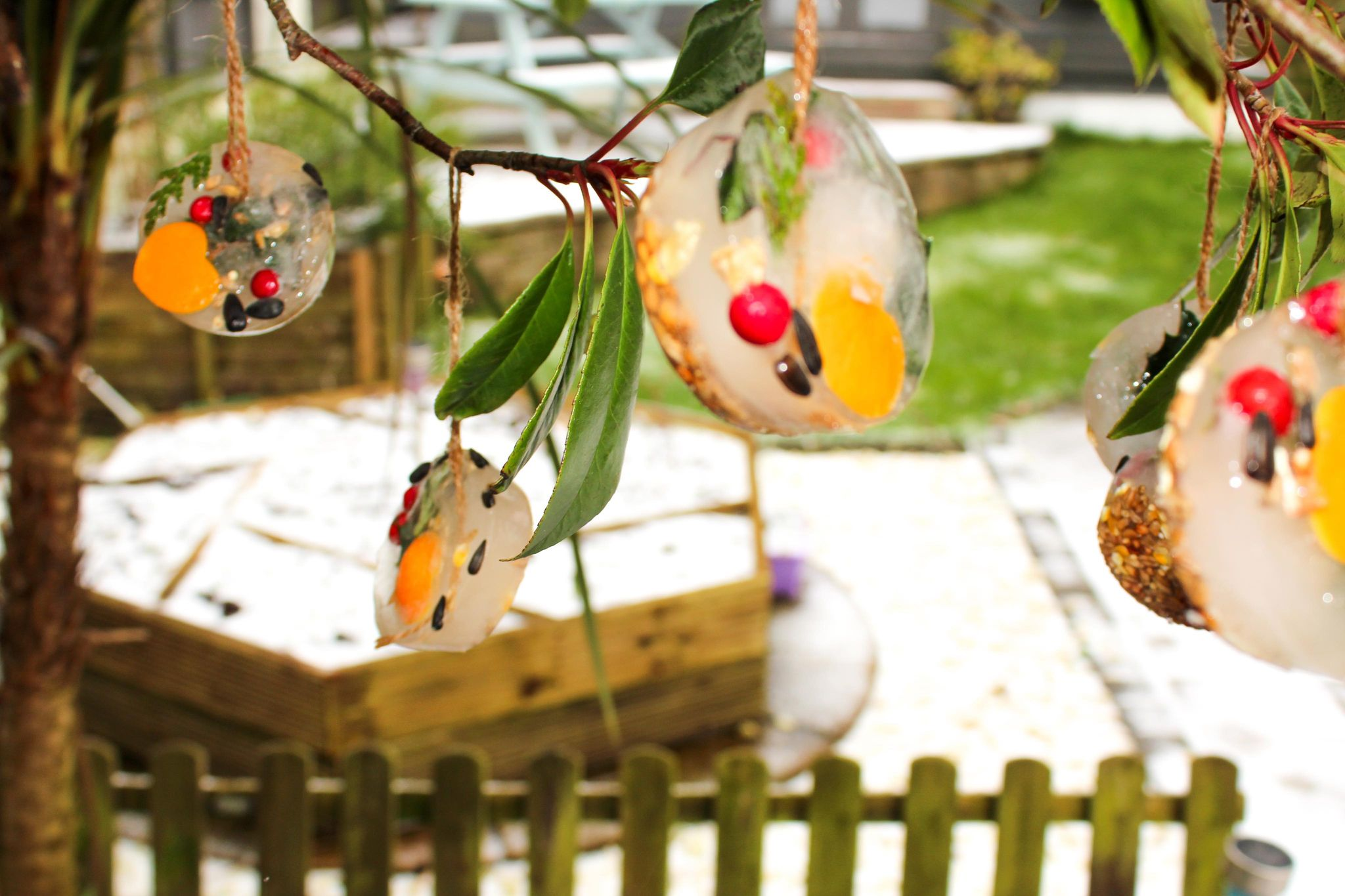Hanging Ice Ornament Bird Feeder - Mother Of Grom