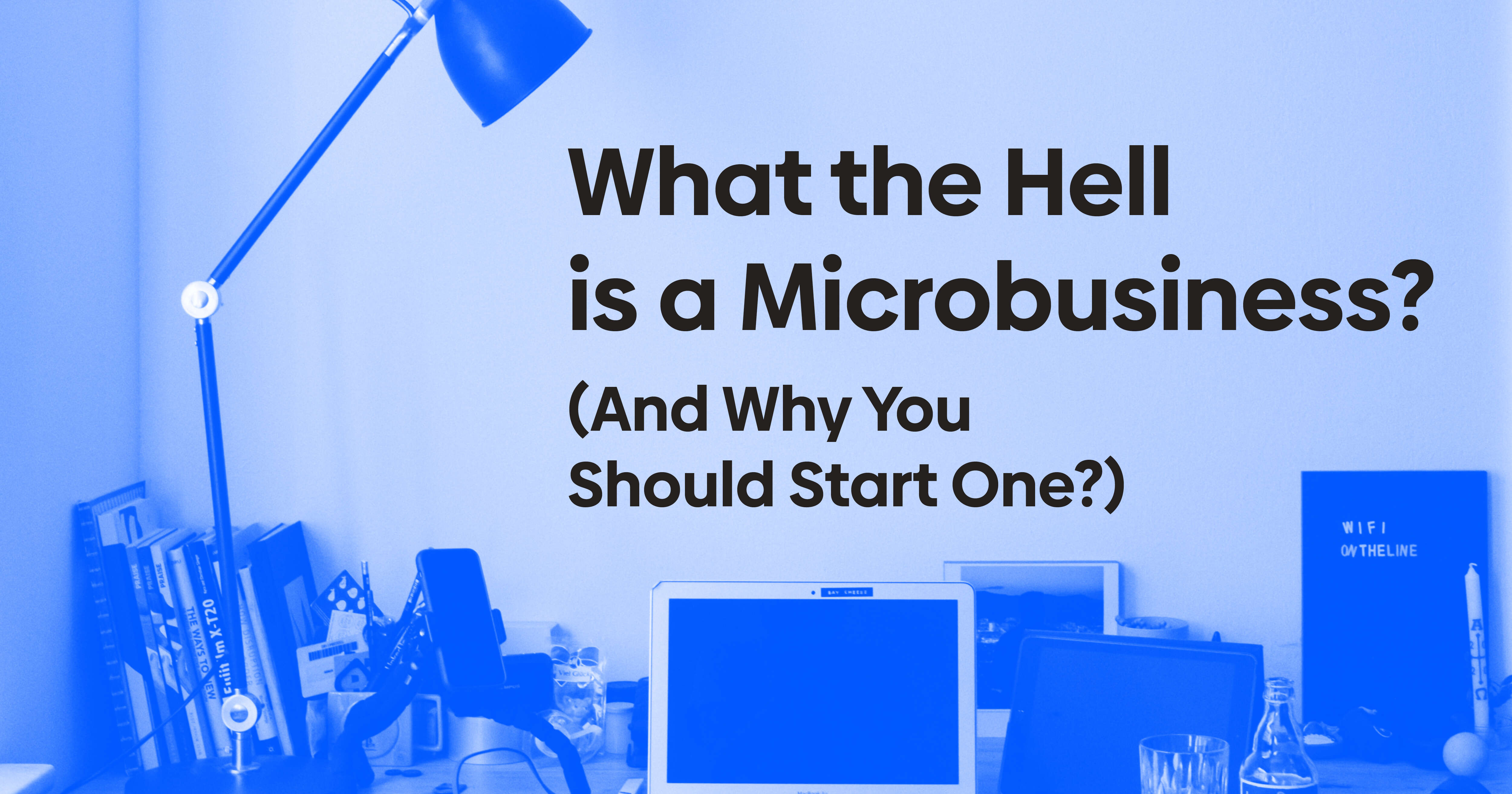What the Hell is a Microbusiness? (And Why You Should Start One?)