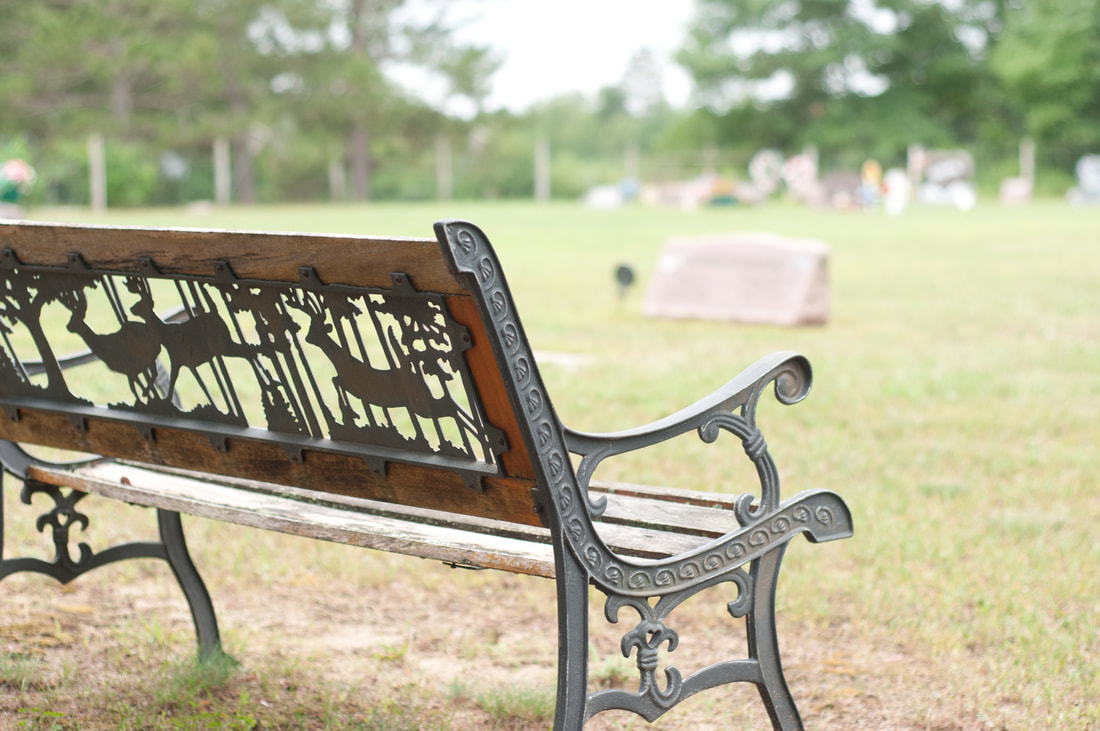 Park bench at South Arm Cemetery in Turtle River Township