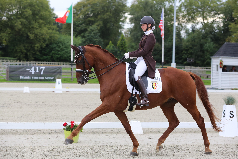Céline Schelstraete en haar paard Limited Edition op dressuurwedstrijd