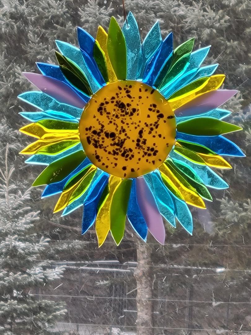 Sunflower multicolor
