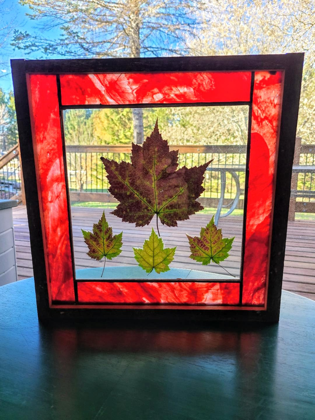 Stained glass with Maple leaves