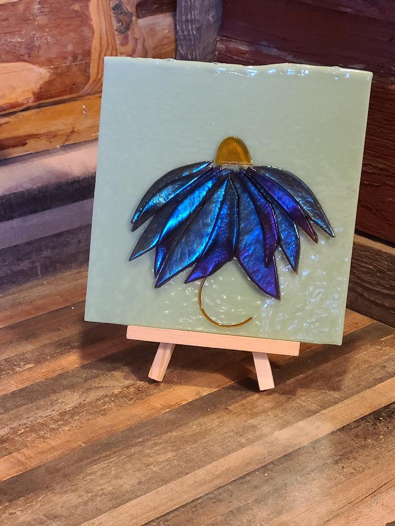 Iridescent Coneflower