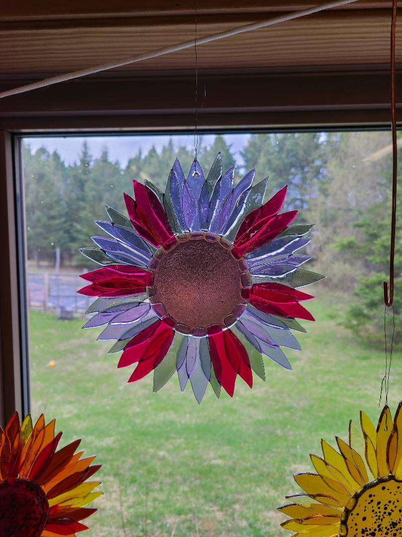 Sunflower in pinks, lavenders, gray