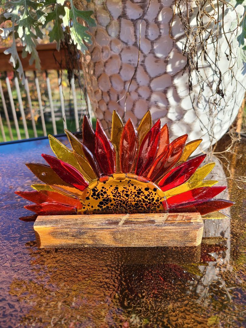 Sunflower in stand