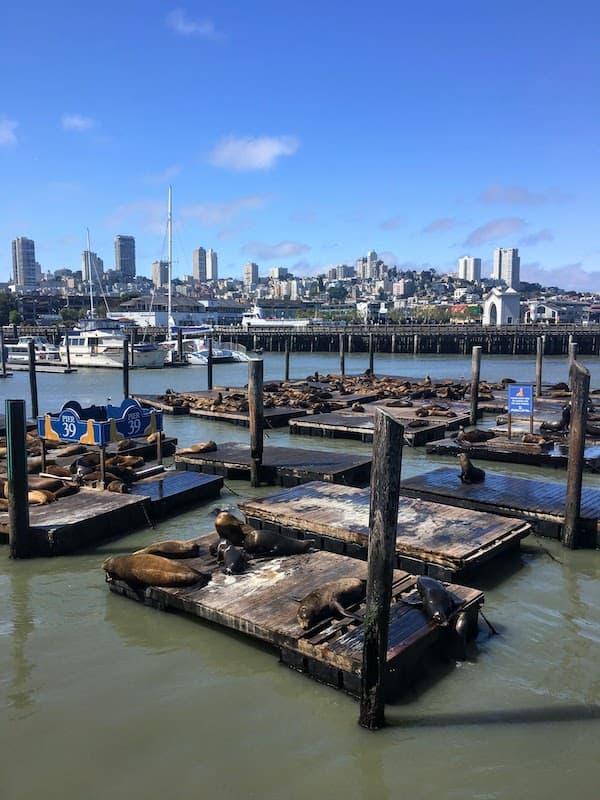 Pier 39 San Franciscoi