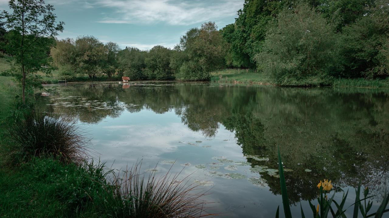 Ponds & Rivers