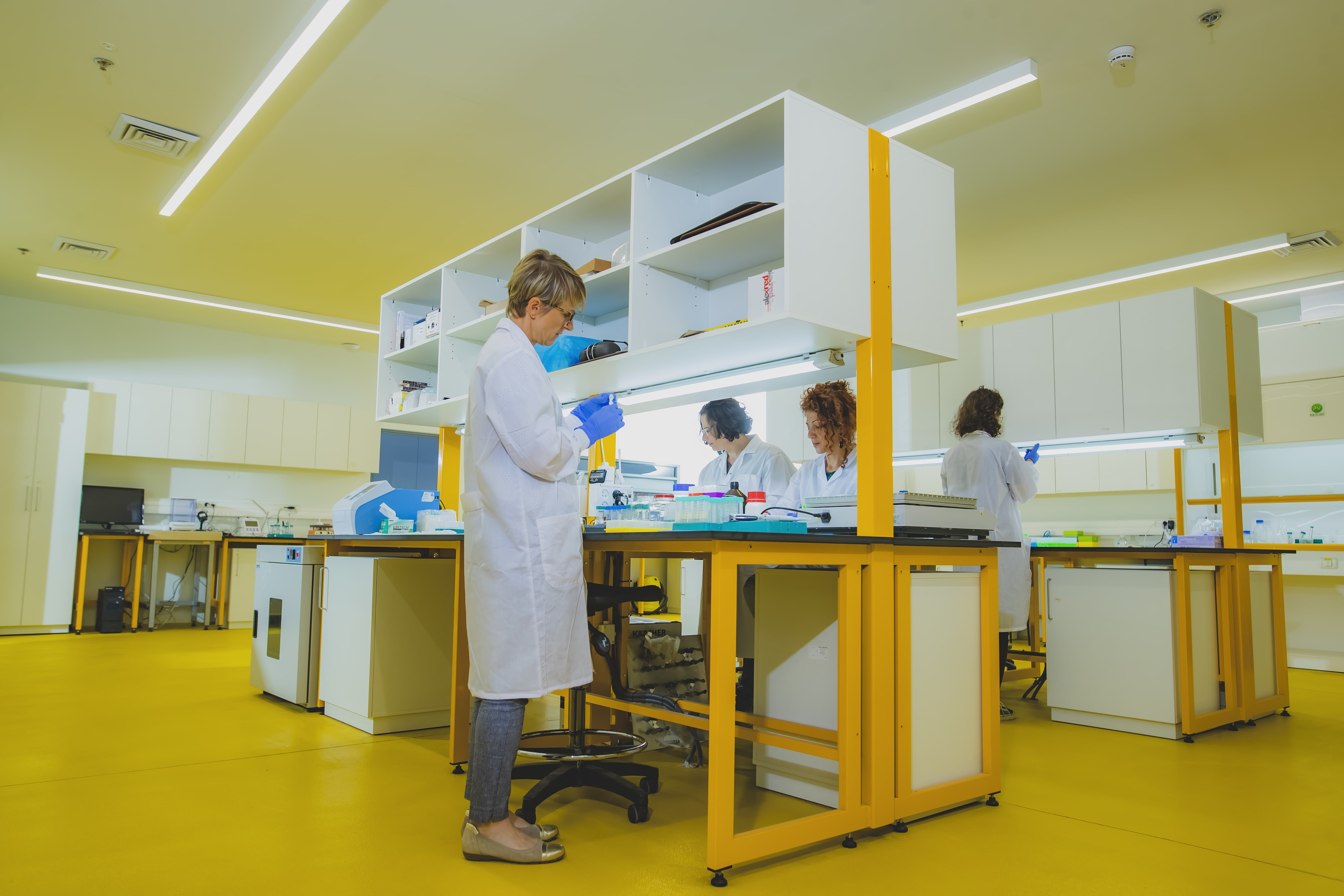 Team in the lab creating smarter sesame formulas