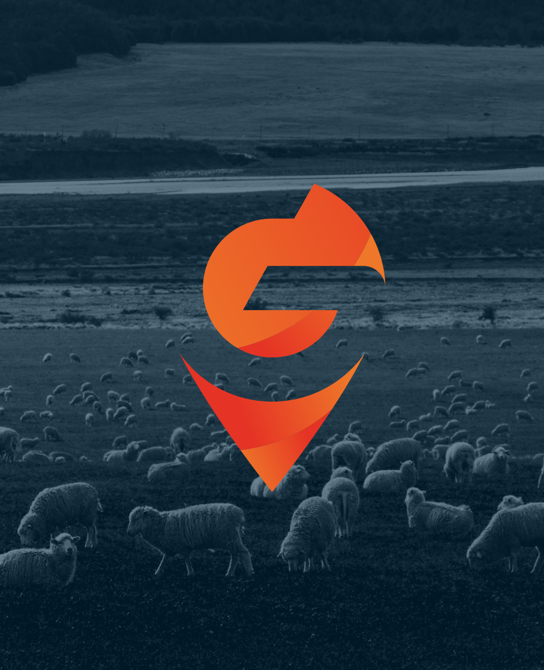 Blue monochrome image of farmland and sheep with a logo in the shape of a location pin you'll find on a map with a G in the negative space.