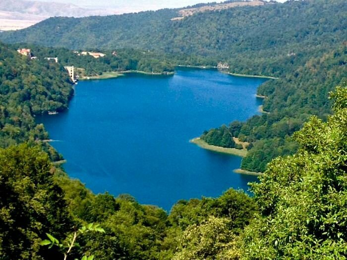 blue lake surrounded by green canopy