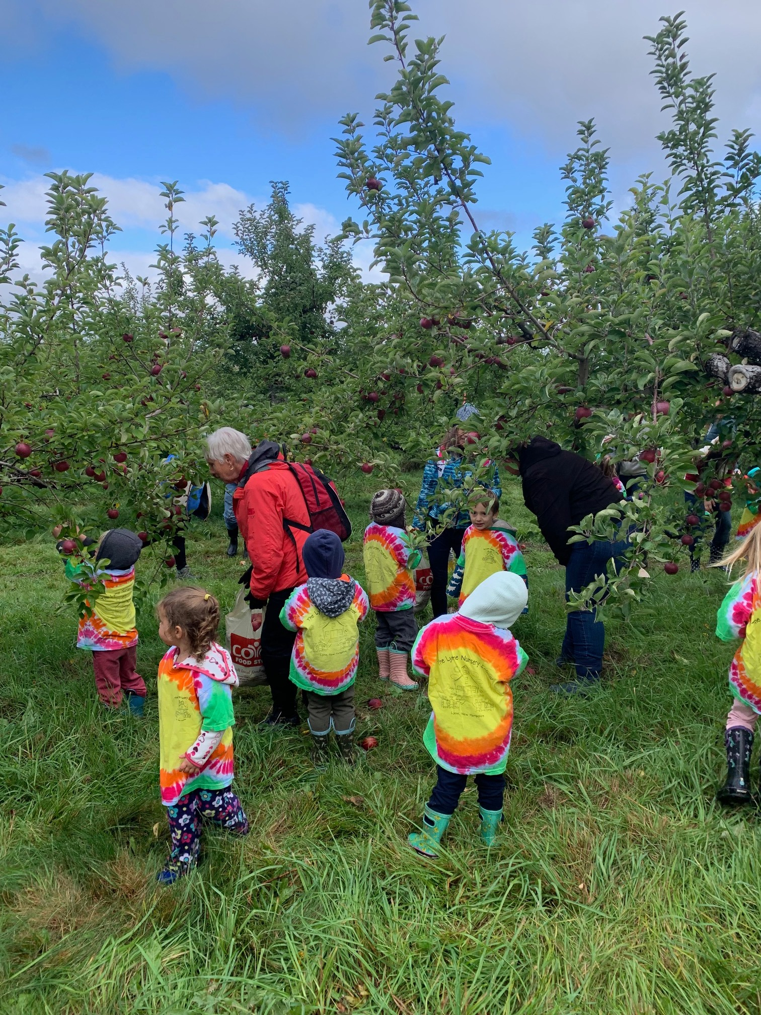preschool teacher and students picking apples on a farm