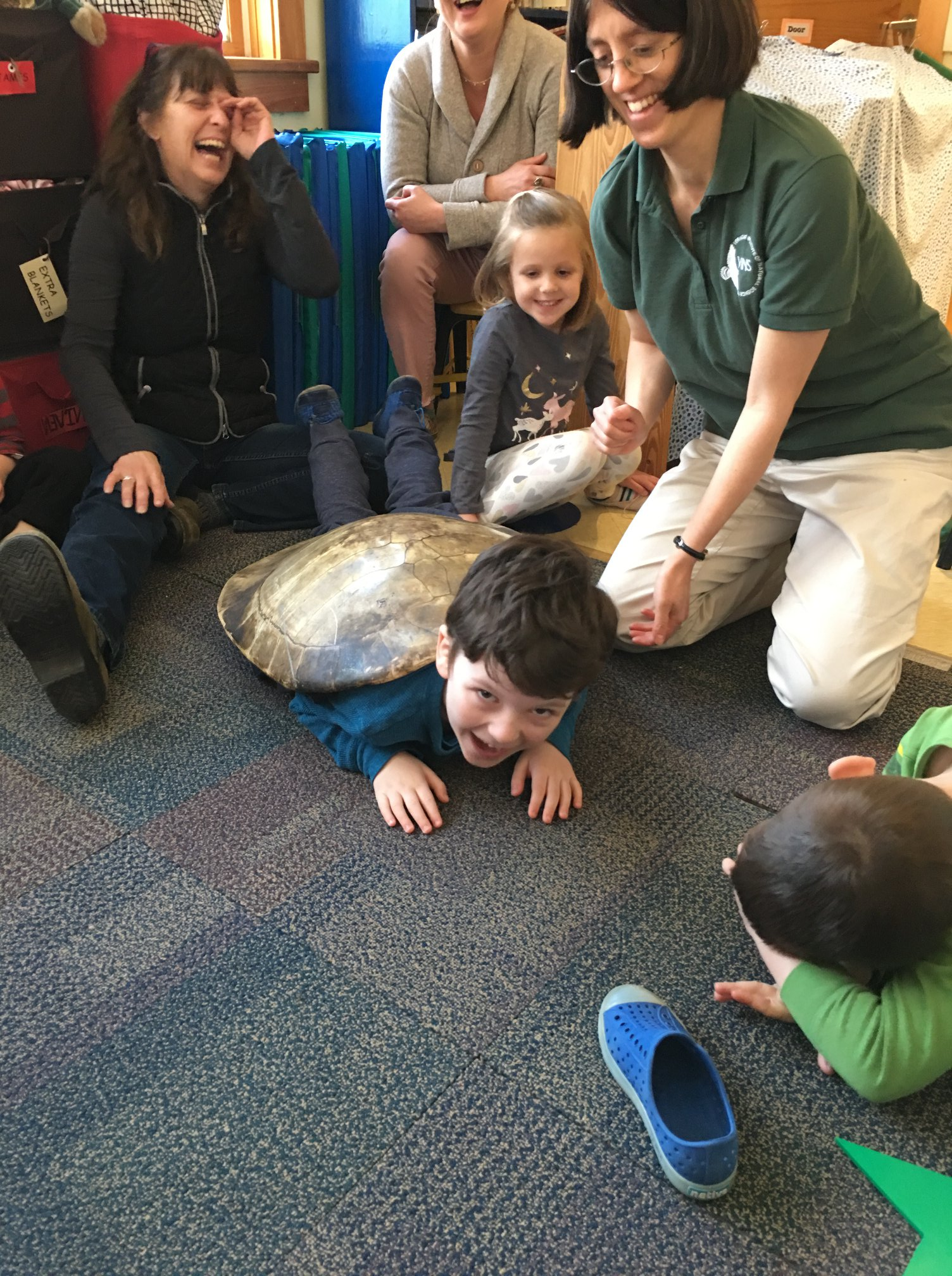 preschool boy crawling on floor with large turtle shell on his back