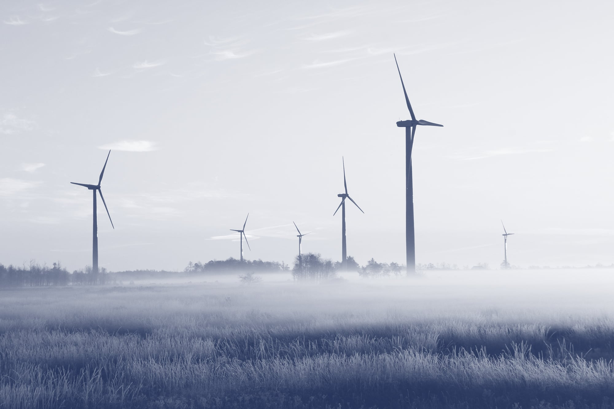 a group of wind turbines in a field