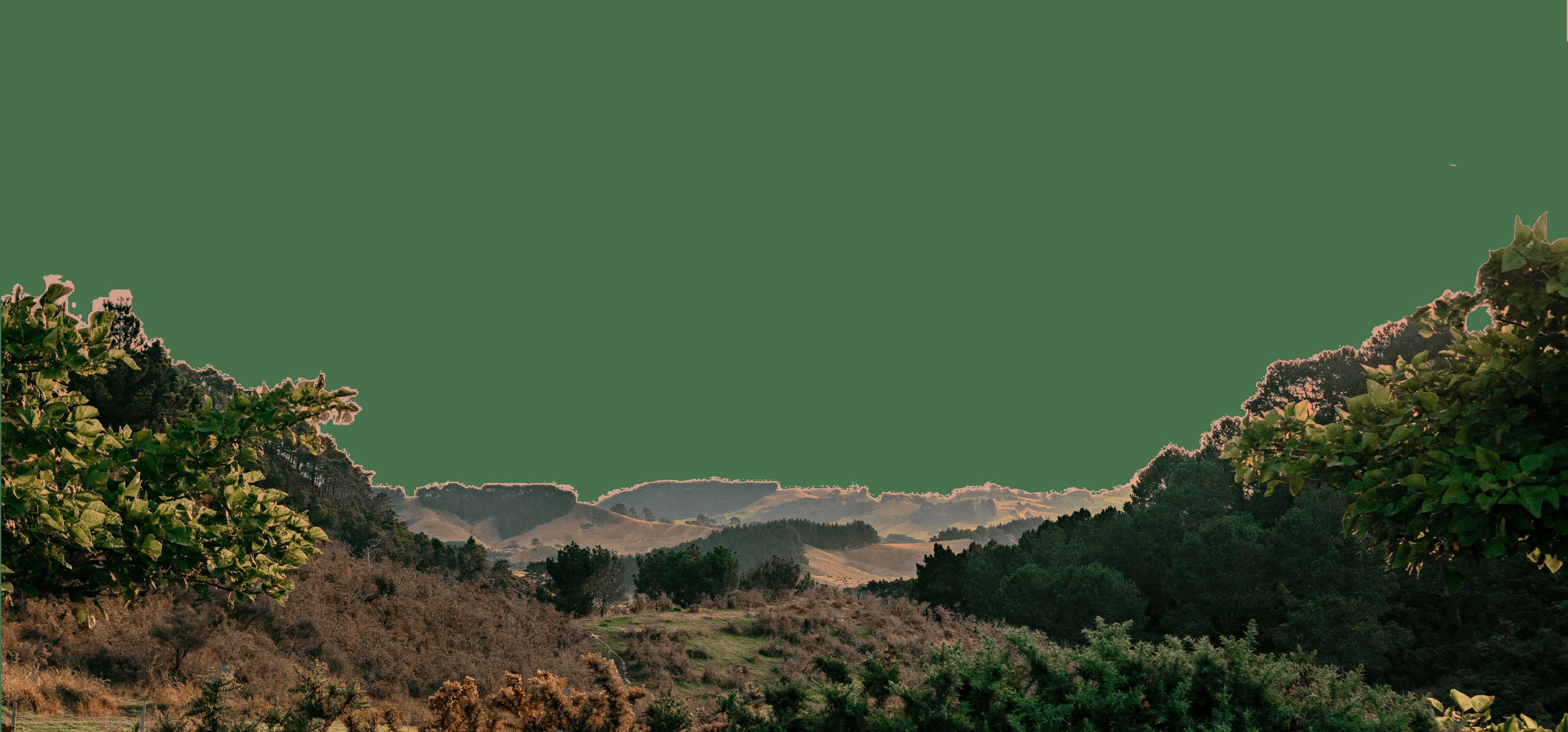 A sunset view of Coromandel hills