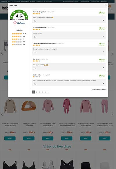 Example of our widget in a webshop