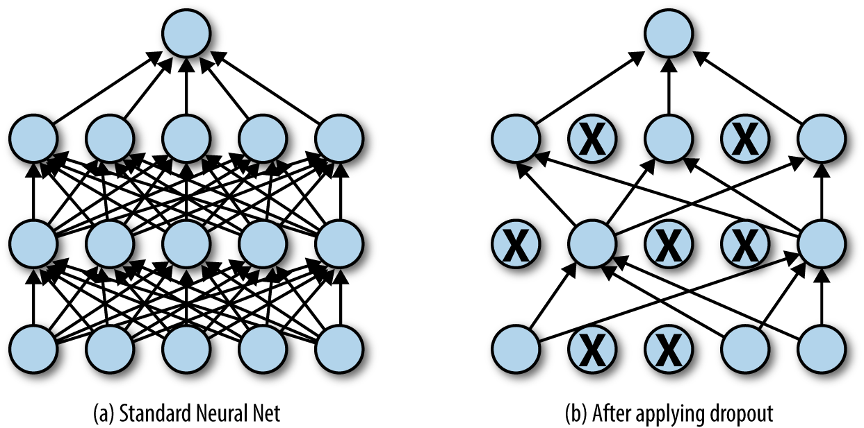 dropout layer applied to a standard neural net