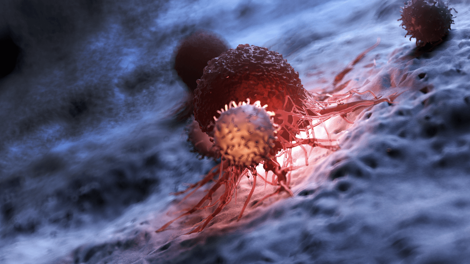 white blood cells attacking a cancer cell