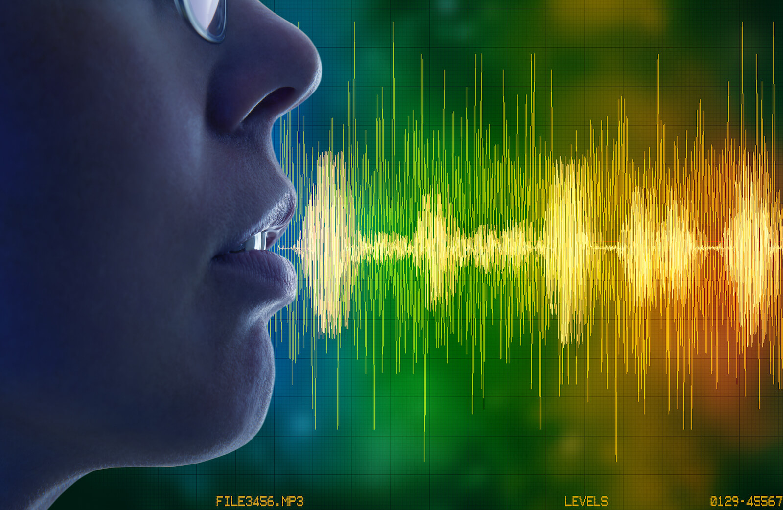 Automated data capture systems: voice recognition concept