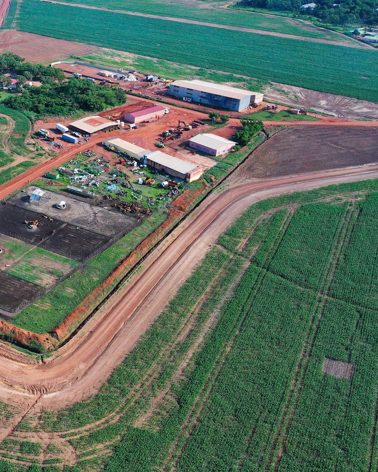 Gocongo farm
